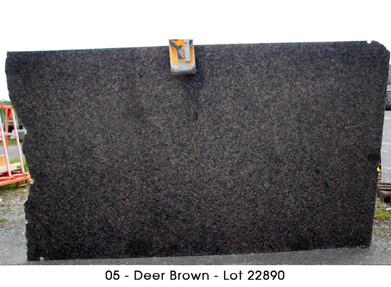 granit deer brown